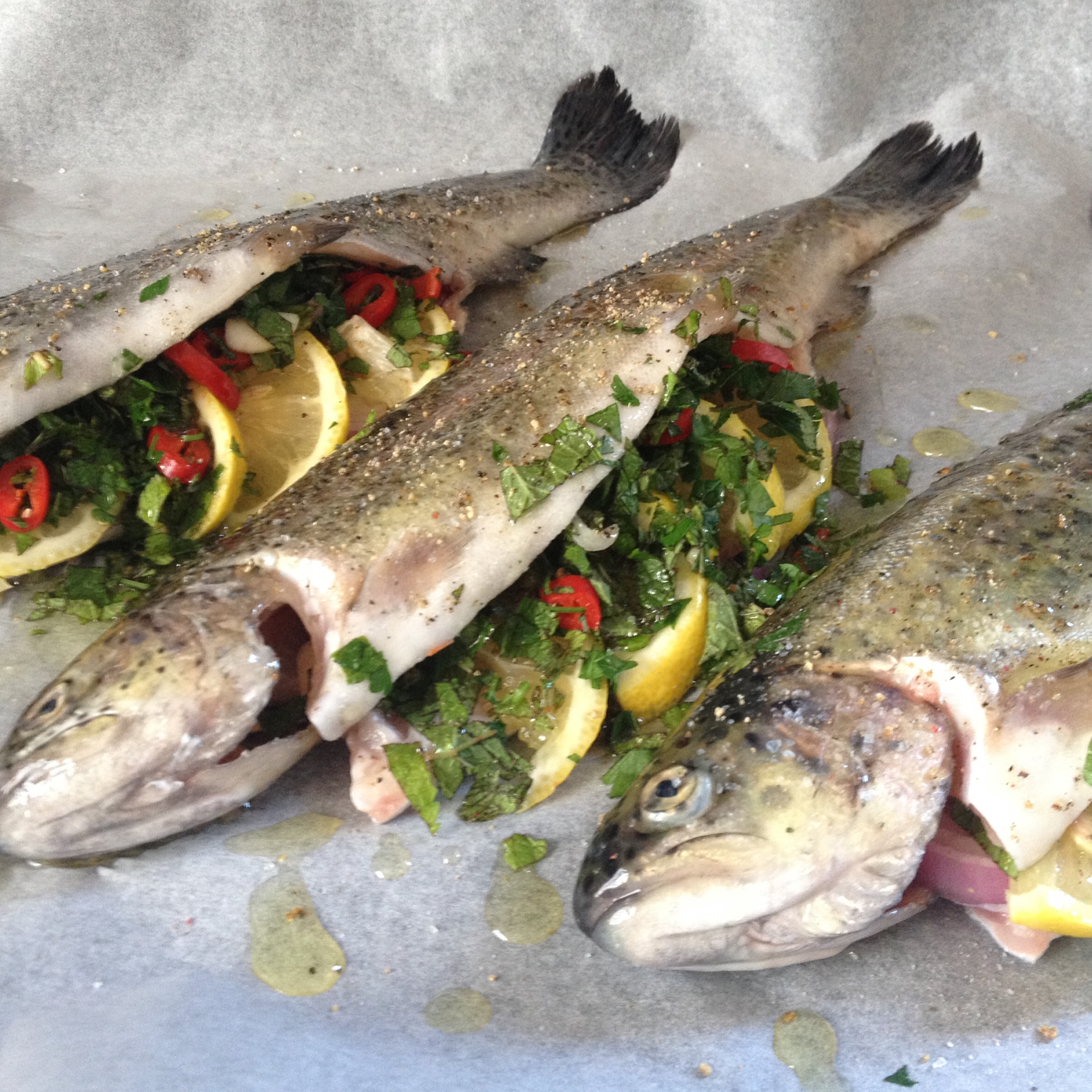 Oven roasted trout with fresh herbs basil and oil for Oven temperature for fish